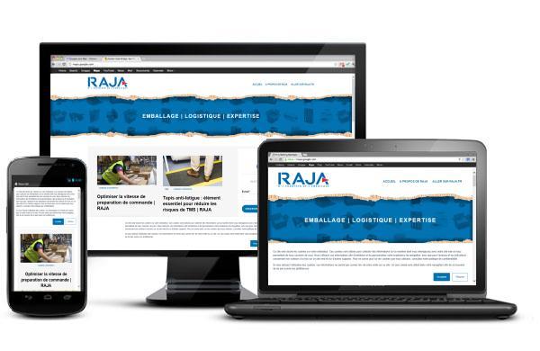 Blog Raja