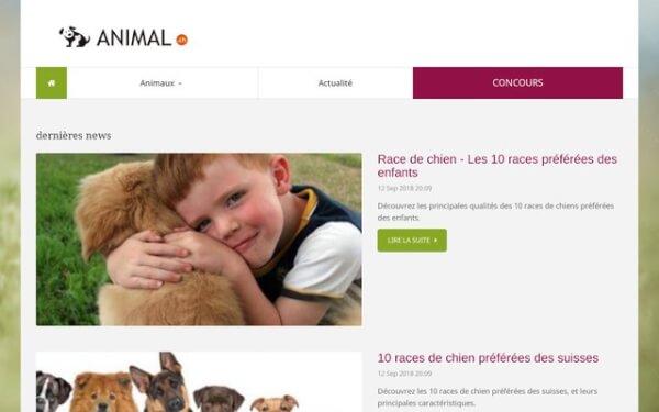 Tout savoir sur les animaux de compagnie