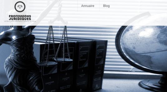 Guide sur les Professions Juridiques
