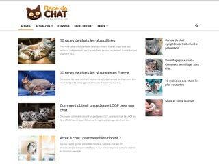 L'animal de compagnie préféré des Français : le chat